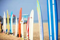 surfboards 2
