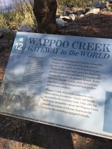 Wappoo Creek: Gateway to the World
