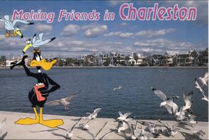 Daffy Duck Charleston Postcard - Circa 1970's