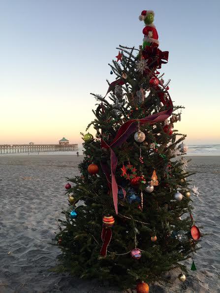 Tree in the sand - Folly Beach