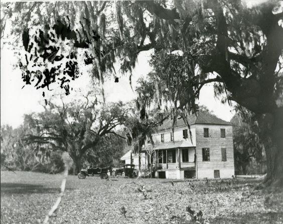 Willton Bluff Plantation (Charleston County) - 1920's