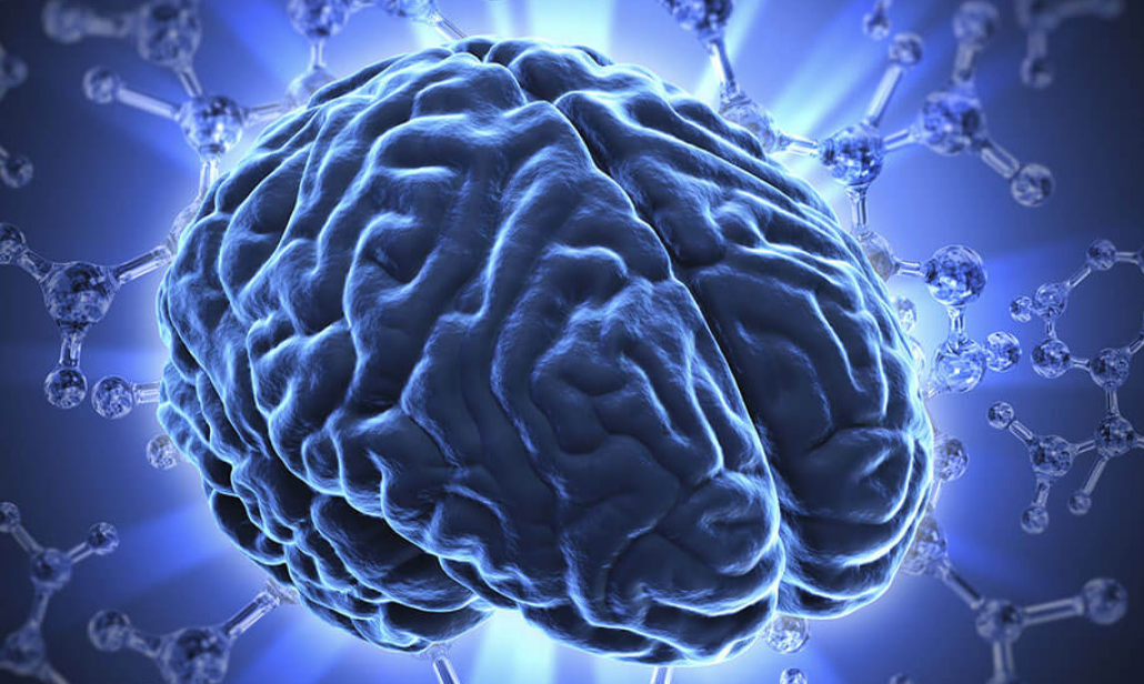 MUSC Seeking Healthy Volunteers for Study of Cognitive